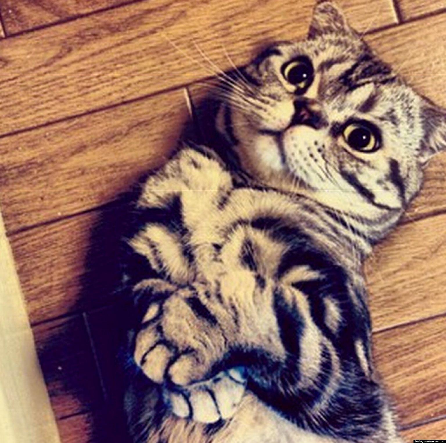 shishi maru gatto (7)