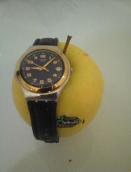 apple-watch-meme (7)