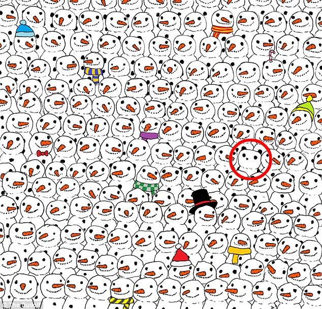 panda illusione ottica