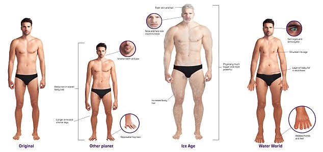 evoluzione uomo scienza