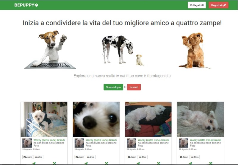 bepuppy-social-network-animali