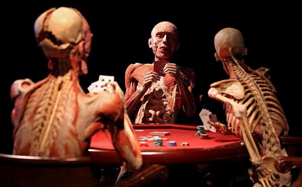 body-worlds-mostra-cadaveri-roma