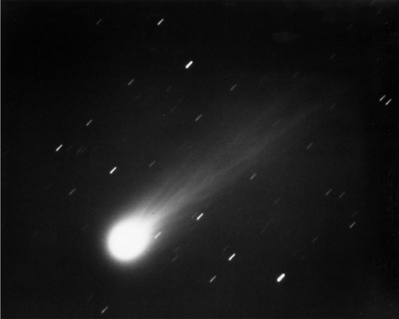 cometa di halley fine del mondo
