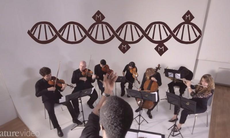 dna-mappa-sinfonia-vita-epigenoma