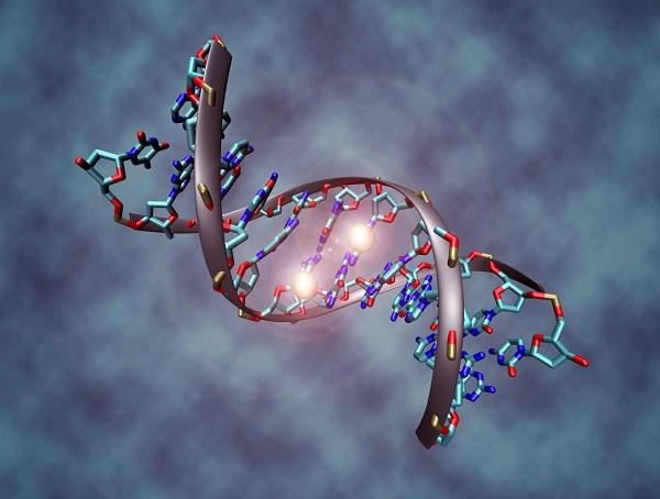 epigenoma mappa dna