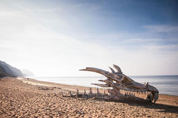 giant-dragon-head-on-beach-inspix-07
