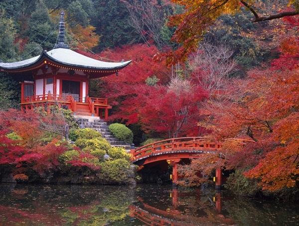 Roma apre le porte del giardino giapponese for Giardino giapponesi
