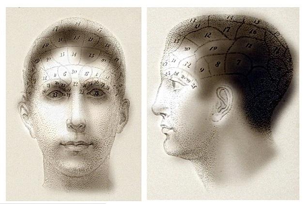 Queste immagini contengono antiche mappature della distribuzione della struttura cranica visibile solo da vicino. A distanza, tutto ciò che si vedrà sono due ritratti normali.