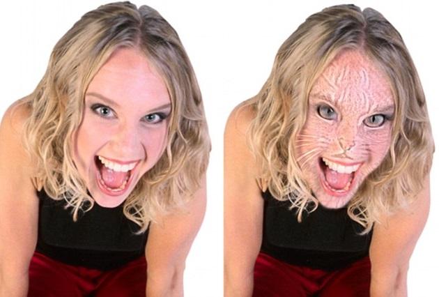 Questa immagine mostra un volto di donna che si trasforma in un gatto a distanza ravvicinata. Allontanatevi e tornerà normale.
