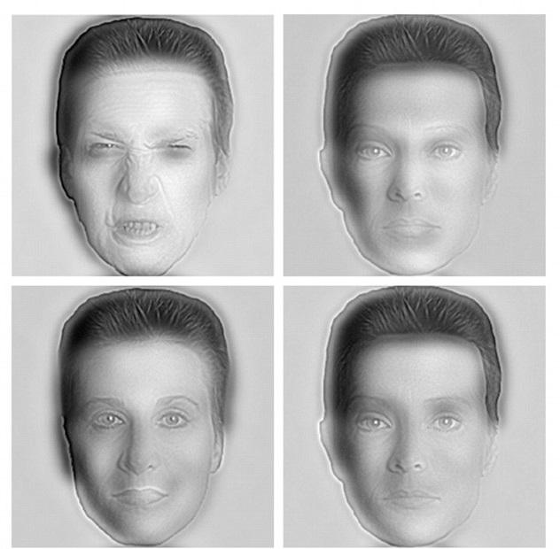 Nella riga superiore, da vicino, si può vedere che l'uomo a sinistra è arrabbiato, mentre la donna sulla destra ha un'espressione facciale placido. Spostati lontano, e le facce cambiano espressioni e persino generi.