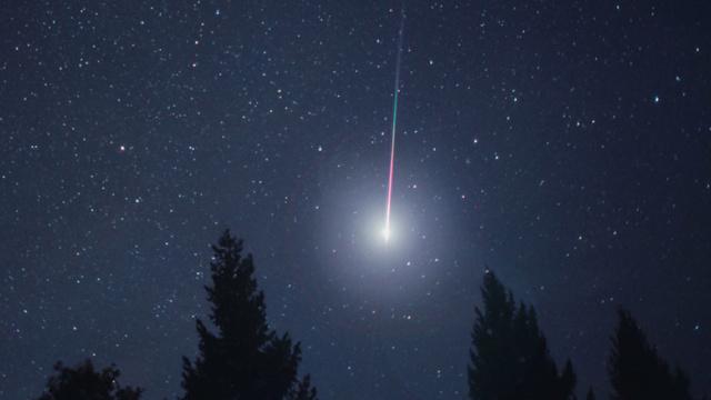 liridi stelle cadenti