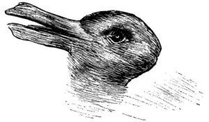 Cosa vedi, coniglio o anatra? L'illusione ottica che svela la tua creatività