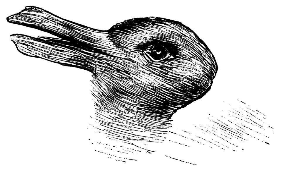 illusione ottica anatra coniglio