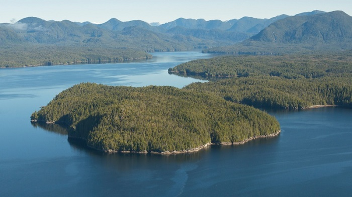 Great Bear Rainforest in Canada Great Bear Regenwald in Kanada