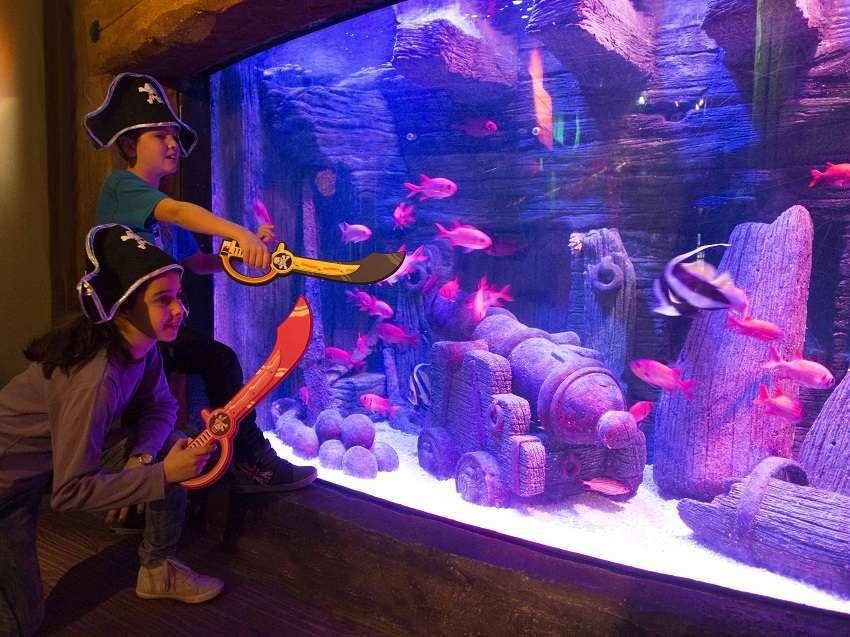 Gardaland SEA LIFE Aquarium Carnevale 2016