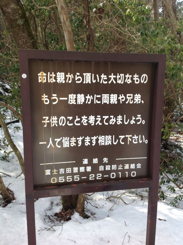 foresta dei suicidi Aokigahara