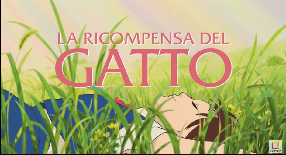 LA RICOMPENSA DEL GATTO CINEMA
