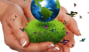 Earth Overshoot Day, il 2 agosto la Terra finirà il suo budget ecologico