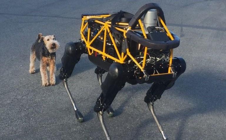 cane robot google