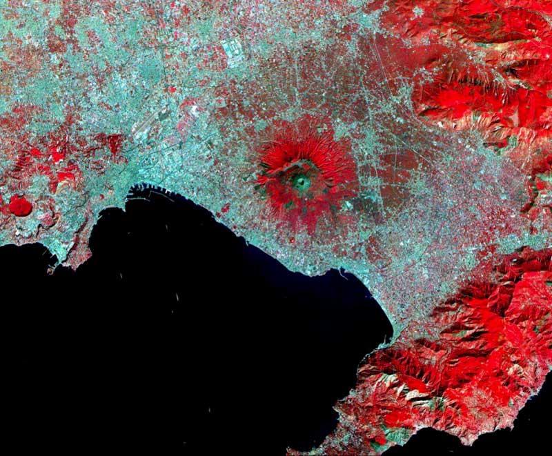 Aster Vesuvio