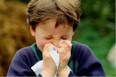 acari allergia