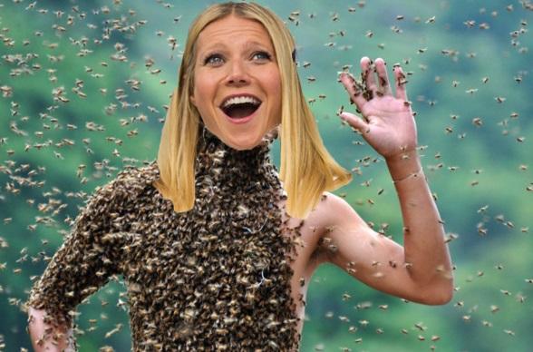 gwyneth paltrow api