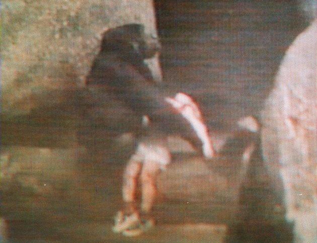 BINTI JUA gorilla