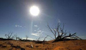 WWF: gli effetti del cambiamento climatico sulla nostra salute