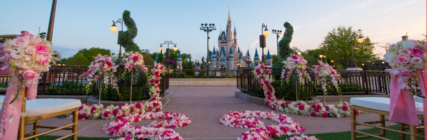 disney world matrimonio