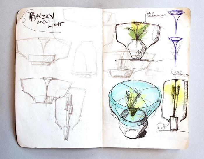 piante lampada 2