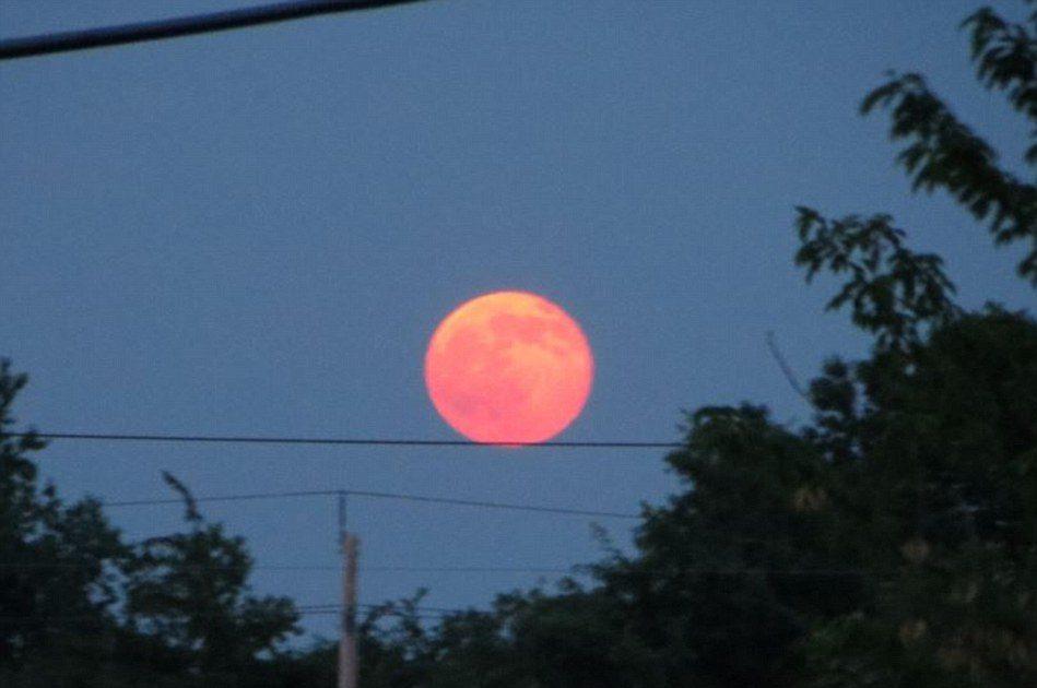 mini luna rosa