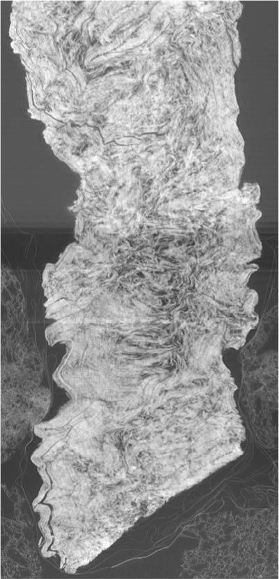 papiri-ercolano-rotolo-interno