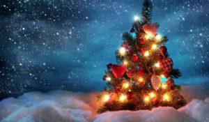 Fai un regalo all'ambiente con i 7 consigli di Corepla per un Natale sostenibile
