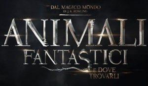 Animali Fantastici saga: J.K. Rowling annuncia altri 5 film