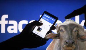 Facebook, tutto ciò che hai postato sarà pubblico: ma è una bufala