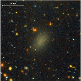 L'immagine mostra Dragonfly 44 e i suoi dintorni. La galassia ha un aspetto caratteristico: si tratta di un oggetto sferoidale con una brillanza superficiale molto bassa, circondata da sorgenti deboli e compatte. Crediti: Pieter van Dokkum et al. 2016/ApJ Letters