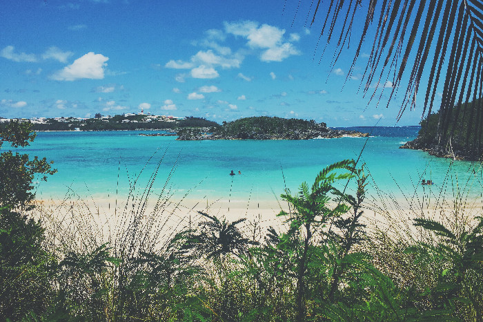 Turtle Bay. Foto on instagram @cketo