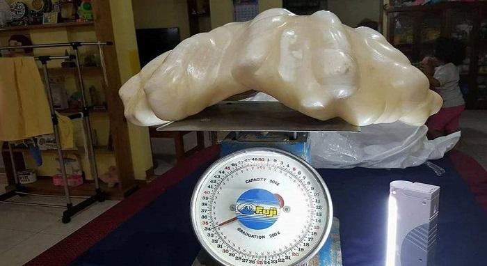 perla gigante