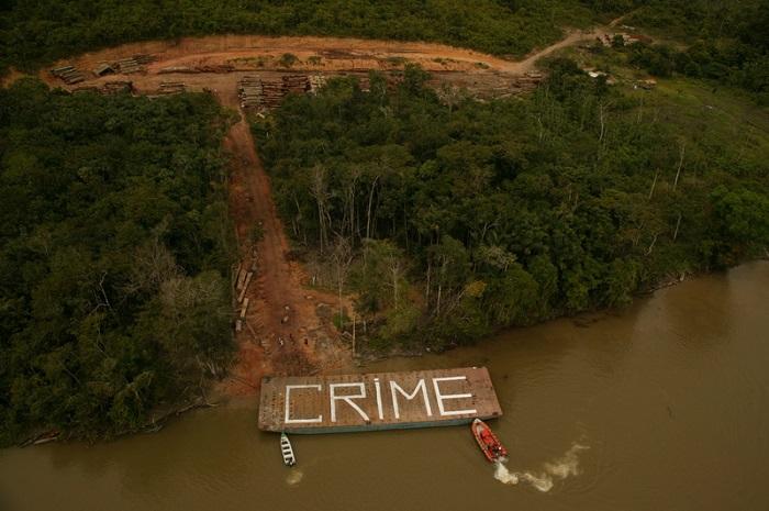 Greenpeace 45 anni