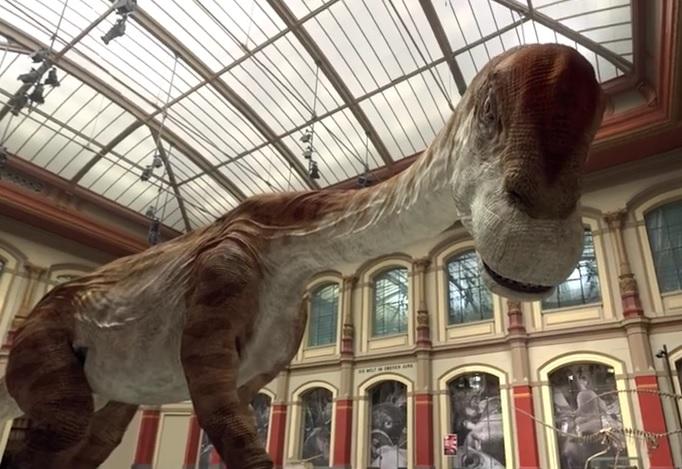 google-dinosauri-3