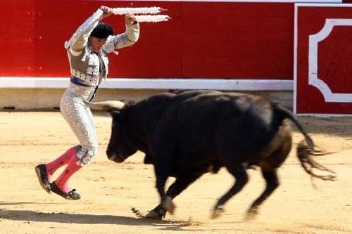 catalogna-torna-la-corrida-2
