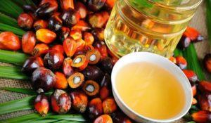 Attenti ai prodotti light e senza olio di palma: contengono più grassi saturi