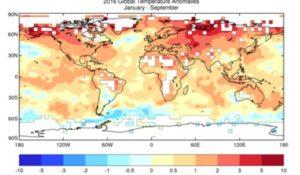 Siccità, uragani e malattie dagli insetti: cambiamenti climatici disastrosi per l'Italia