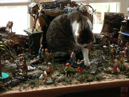 cani gatti natale (8)