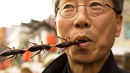 Coop polpette e hamburger di insetti