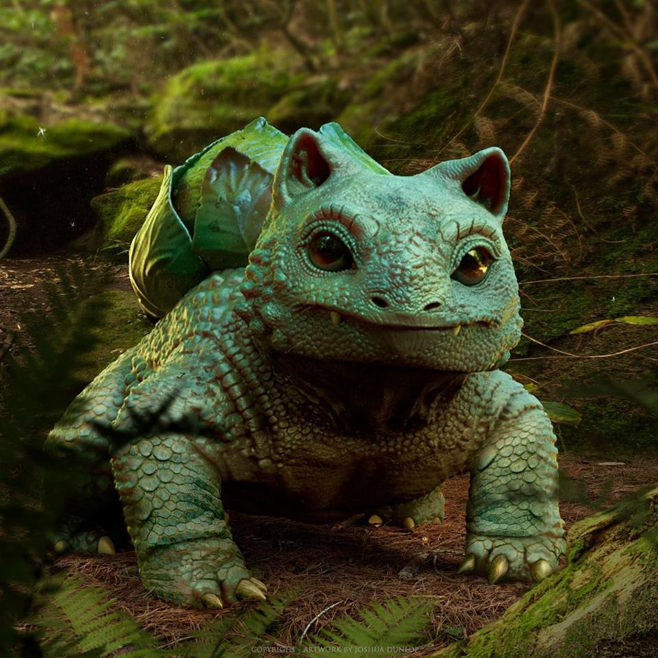 Pokemon Zoology: Bulbasaur
