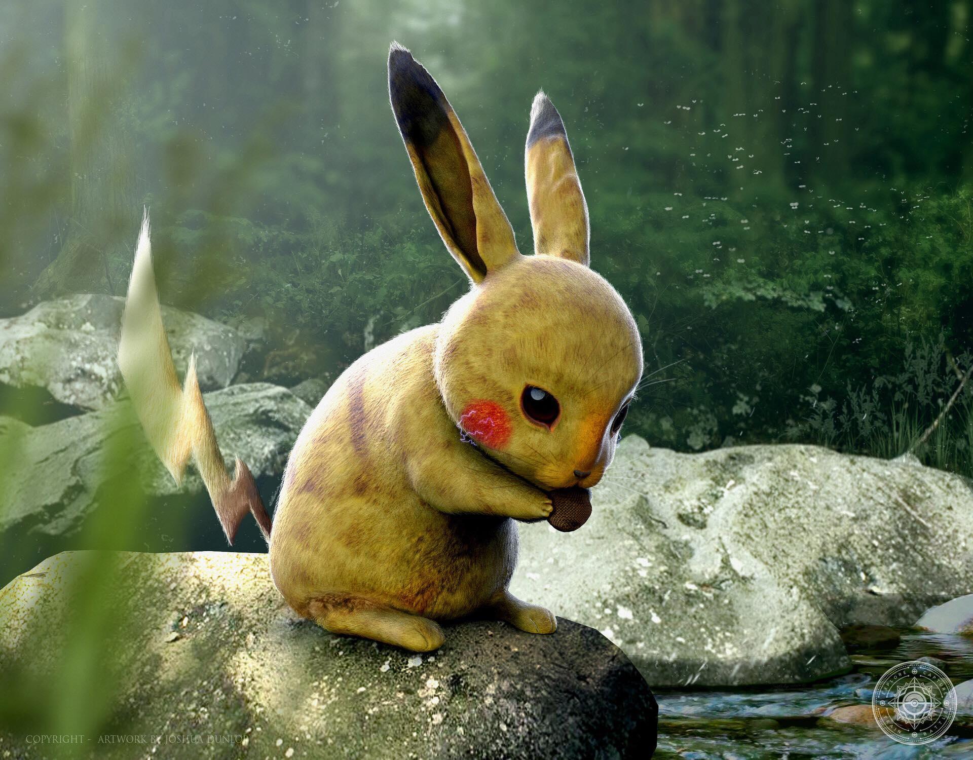 Pokemon Zoology: Pikachu
