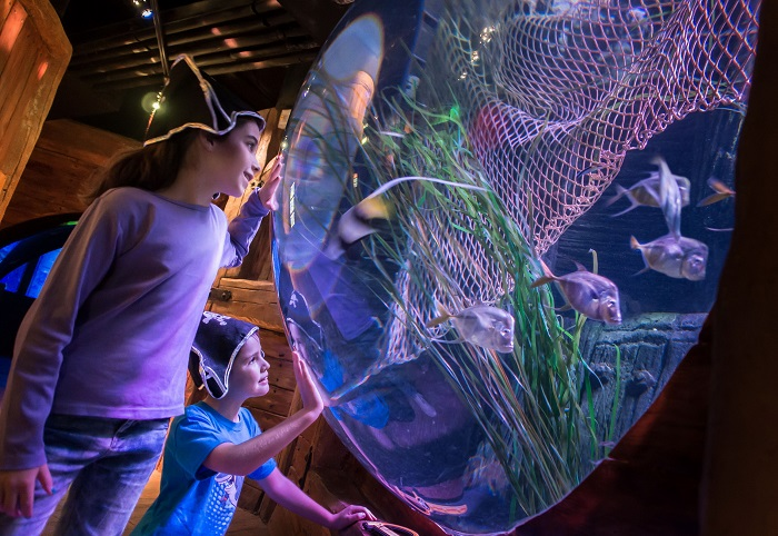 Carnevale a Gardaland SEA LIFE Aquarium