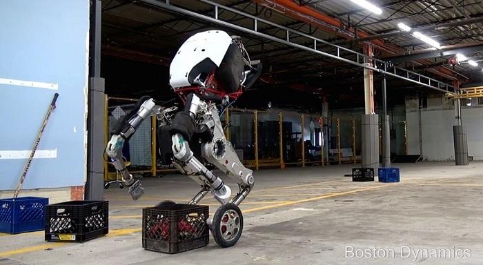 handle robot video