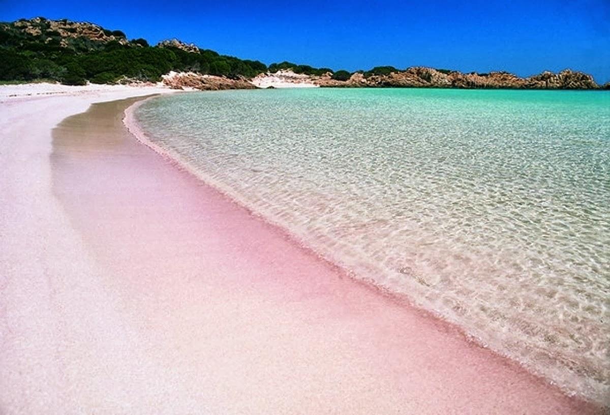 spiagge 2017 multicolor